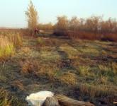 Zeleni Banat - Rusko Selo
